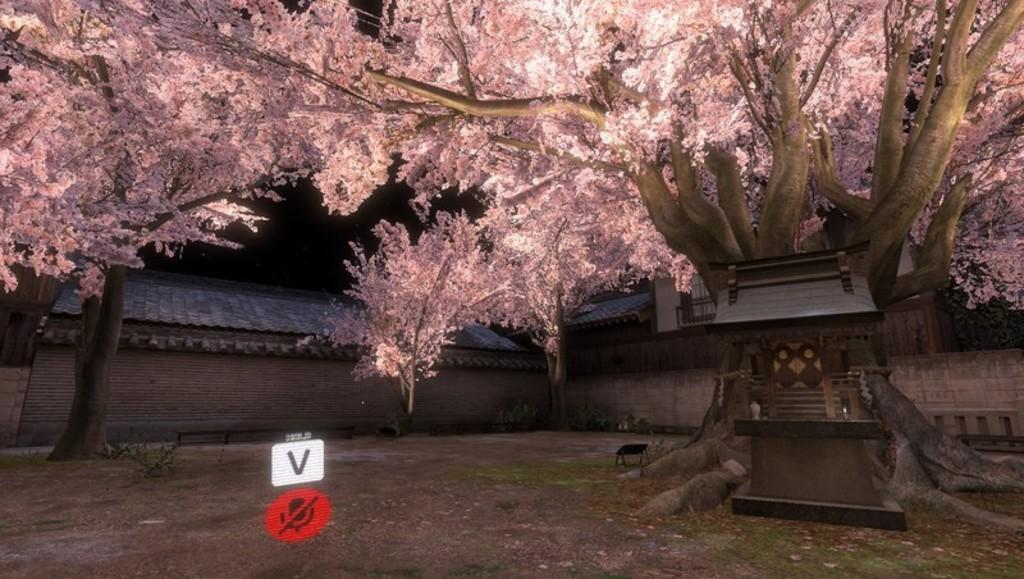 SAKURA hiroba yoru