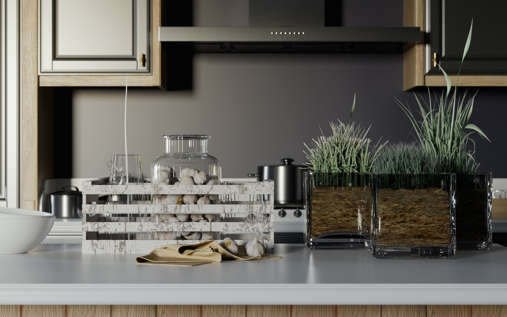 houseT kitchen